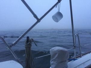 4. Sandy Hook Arrival