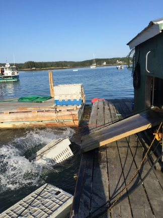 Fresh Lobstah Dock